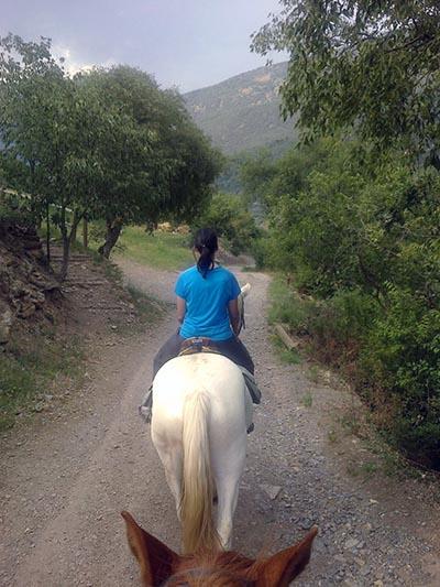 Paseos a caballo en Sort