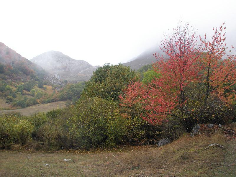 Soto de Sajambre en otoño