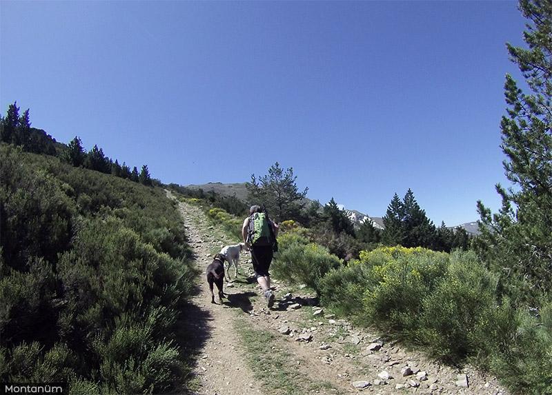 Pico del Lobo, blog de montaña