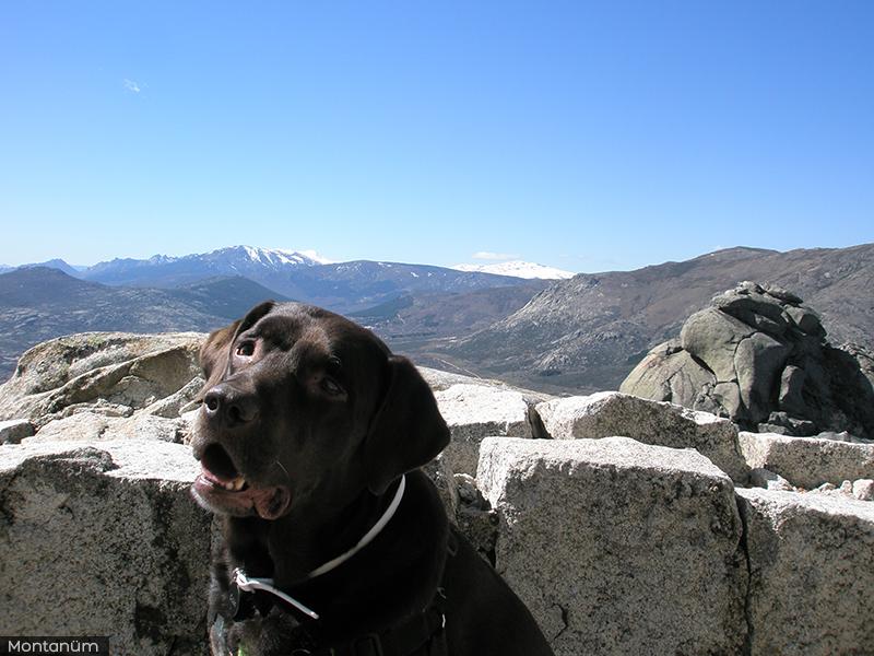 Orión en la cima de Cancho Gordo